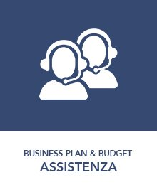 assistenza-business-plan-budget