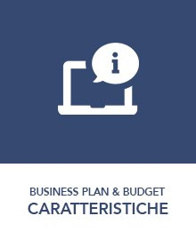 caratteristiche-business-plan-budget