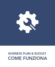funzioni-business-plan-budget