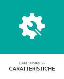 funzioni data business