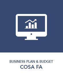utilizzo-business-plan-budget